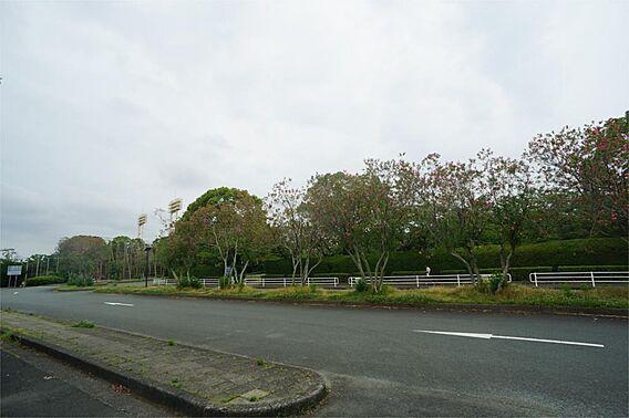 四ツ池公園(1...