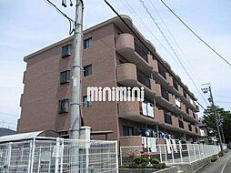 DM41[3階]の外観