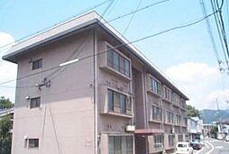 ニューヴィラ京都[205号室号室]の外観