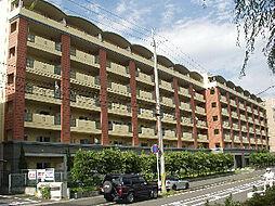 リサービア大津[3階]の外観
