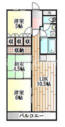 徳島県徳島市末広1丁目の賃貸マンションの間取り
