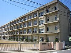 錦浦小学校 約240m