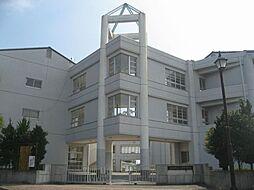 ソフィア[3階]の外観