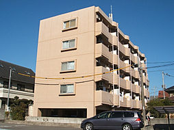 愛媛県松山市道後北代の賃貸マンションの外観