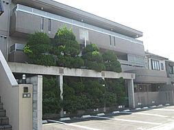 ラヴィ松ヶ崎[1階]の外観