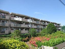 サンマグノリア[3階]の外観