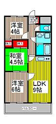 埼玉県さいたま市桜区南元宿2丁目の賃貸マンションの間取り