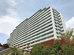 フォートンヒルズE棟[9階]の外観
