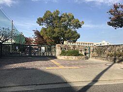 北陵中学校…徒歩約20分