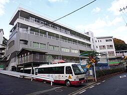 広島県広島市南区比治山本町の賃貸マンションの外観