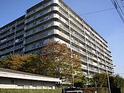 戸田第一スカイハイツ H棟[641号室]の外観
