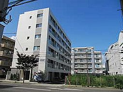 宮城県仙台市若林区南小泉字八軒小路の賃貸マンションの外観