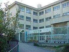 小学校八幡台小学校まで929m