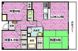 広島県広島市安芸区矢野南5丁目の賃貸マンションの間取り