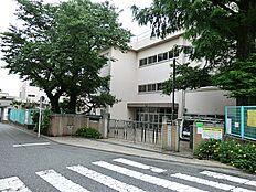 松ノ木小学校 約817m