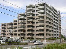 アソシアテラス博多南[8階]の外観