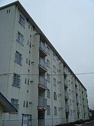 東本郷[1F号室]の外観