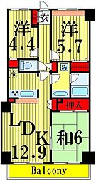 サンリット西新井[7階]の間取り