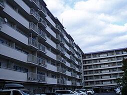 イトーピア向日マンションA708号[7階]の外観