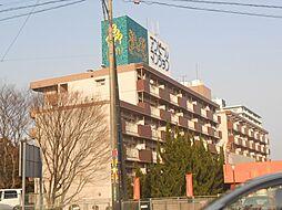 新栄二日市ハイツ[613号室号室]の外観
