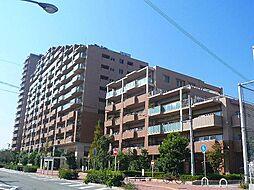兵庫県西宮市浜甲子園4丁目の賃貸マンションの外観