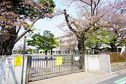 目の前には小学校がございます。校庭の緑が借景となっており爽やかで綺麗です。