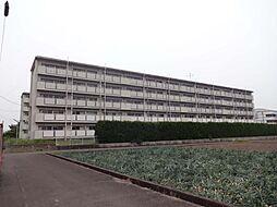 ビレッジハウス松山上野[302号室号室]の外観