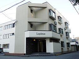 Lupinus[301号室]の外観