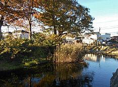 横川弁天池公園 500m