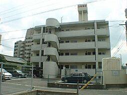 コーポ山崎[303号室]の外観