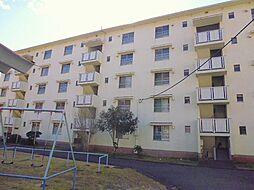 静岡県伊豆の国市御門の賃貸マンションの外観