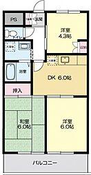 埼玉県富士見市羽沢3丁目の賃貸マンションの間取り