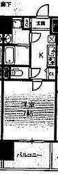 アドバンス大阪ルーチェ[1203号室]の間取り