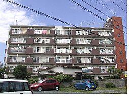 プレアール荒木[606号室]の外観