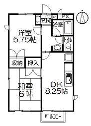 チェリーハウス小和田[203号室]の間取り