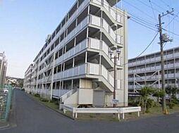 神奈川県藤沢市亀井野の賃貸マンションの外観