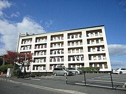 岡田グリーンハイツ[1階]の外観
