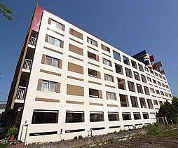 京都府京都市左京区松ケ崎雲路町の賃貸マンションの外観