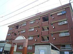 セレネティコーポ松山[405号室]の外観