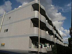 千葉県柏市西原1丁目の賃貸マンションの外観