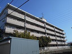 ネオシティ道明寺[2階]の外観