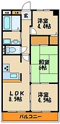 セラヴィ[6階]の間取り