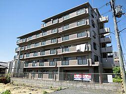 COSMIC ROOM21[4階]の外観