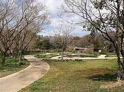 歩いてすぐの公園です