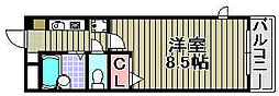 トーシンプリーマ貝塚[302号室]の間取り