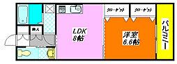 プリムローズ・八戸ノ里 204号室[2階]の間取り