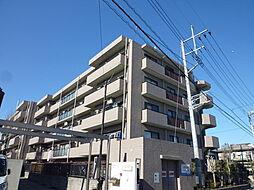 プリムローズ上福岡[306号室]の外観