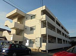 愛媛県松山市西石井6丁目の賃貸マンションの外観