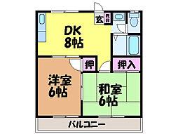 愛媛県松山市朝生田町1丁目の賃貸マンションの間取り
