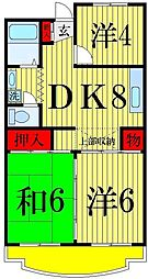 東京都足立区島根4丁目の賃貸マンションの間取り